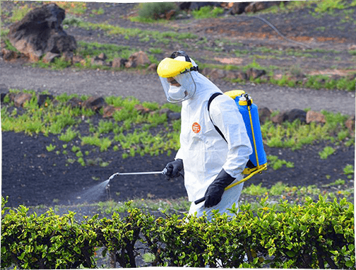 Pesticides: the current state of play