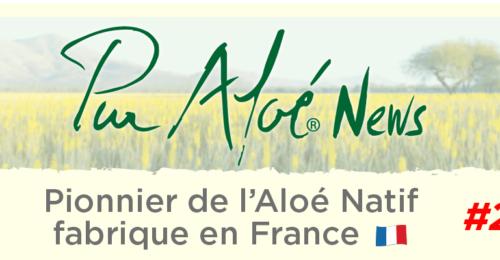 Newsletter n°2 (20/09/17)