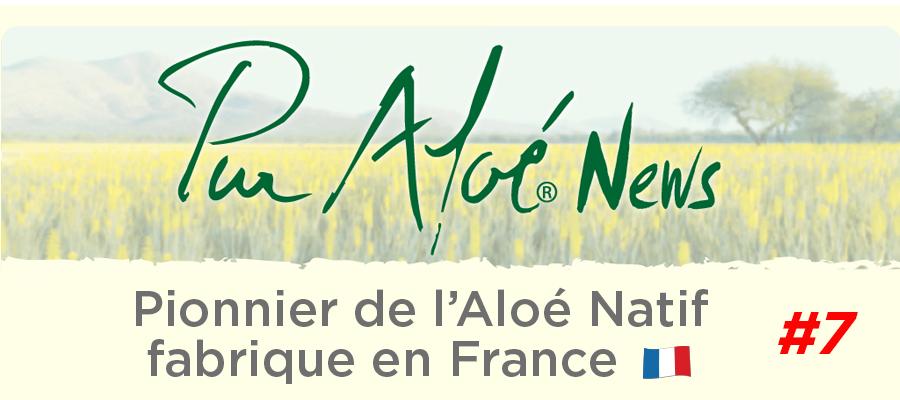 Newsletter n°7 (24/07/18)