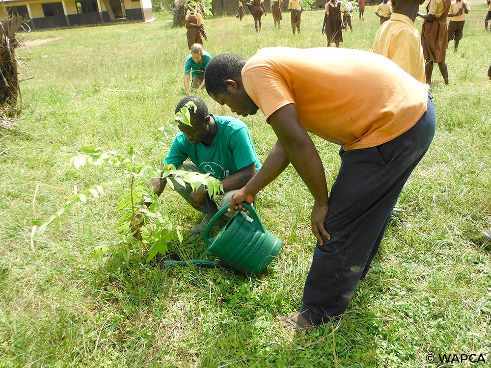 Agro-foresterie dans les communautés locales ©WAPCA